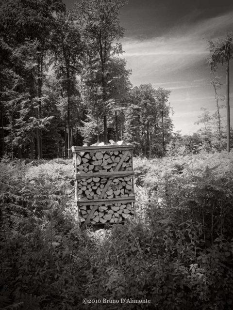 Bruxelles, forêt de Soignes, bois coupé et emballé est  une sorte de narration de l
