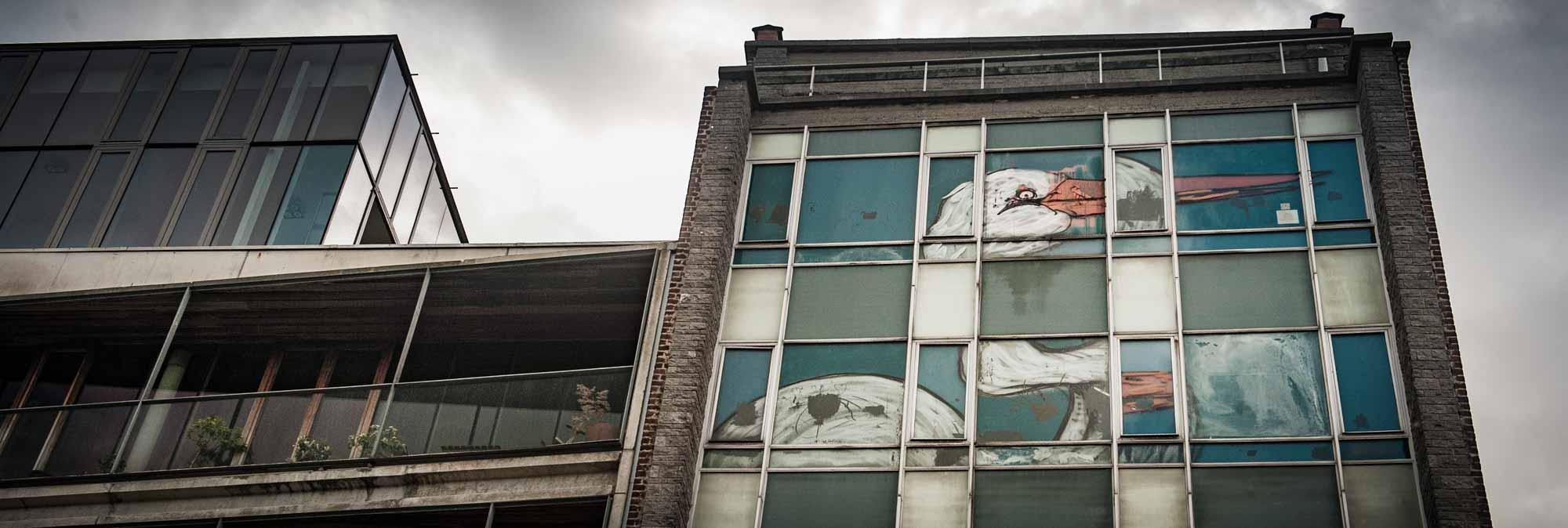 Détail de la fresque d'une cigogne réalisée par Bonom en 2012 rue de l'Héliport à Bruxelles