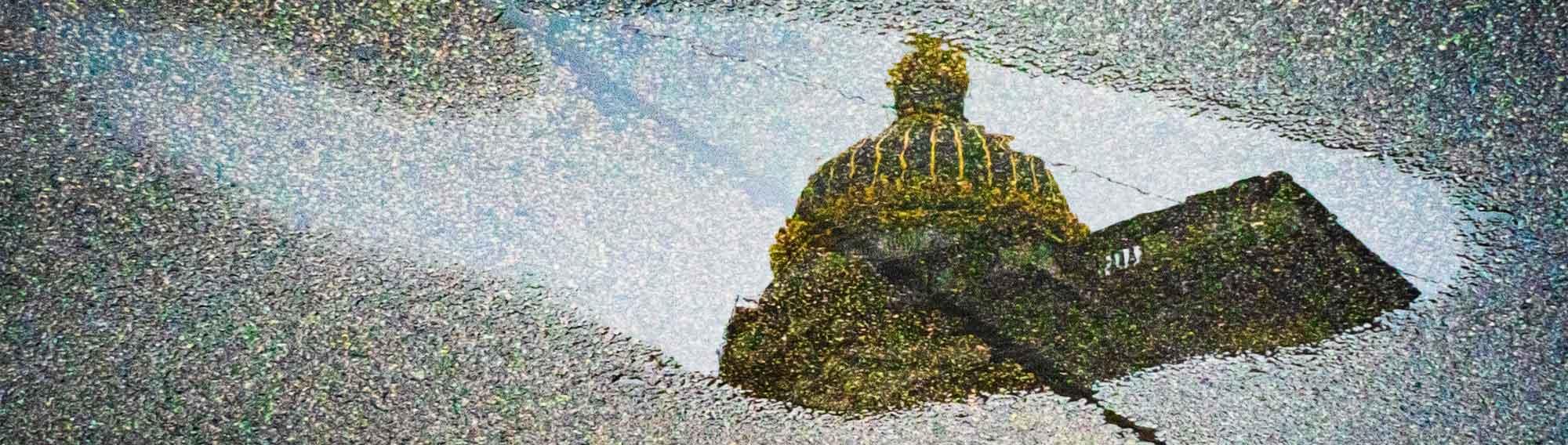 reflet de justice illustration cropped