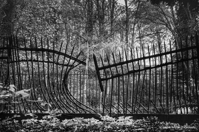 Photographie d'illustration sur le thème de la liberté ou de l'évasion réalisée à Laeken non loin de l'avenue des Ebéniers © 2008 Bruno D'Alimonte