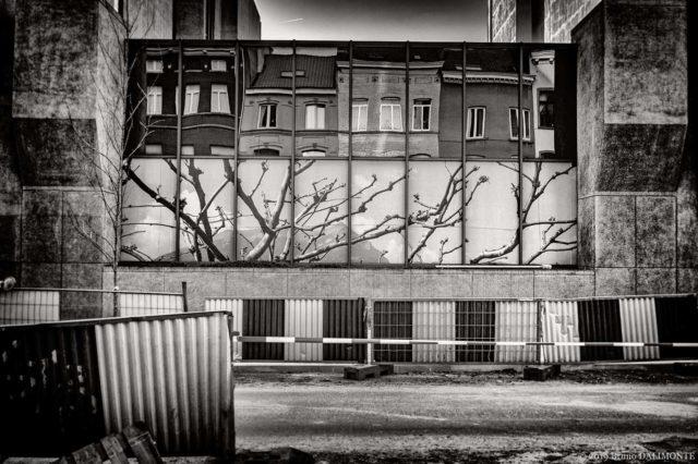 photographie en noir et blanc représentant un chantier dans la rue Froissart pour lequel une illusion de végétation est présente en trompe-l'œil. © 2019 Bruno D'Alimonte