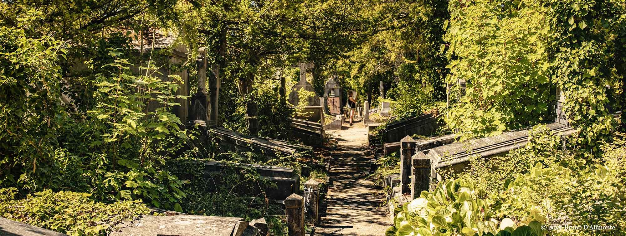 vue informative du cimetière du Dieweg à Uccle