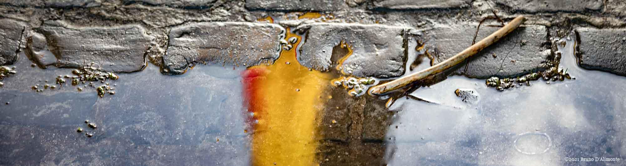 reflet aux couleurs de la Belgique